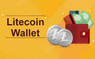 Litecoin кошелек —  выбор и инструкция по созданию