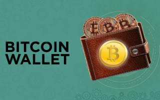 Биткоин-кошелек: выбор хранилища и инструкция по использованию