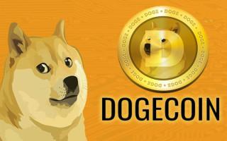 Dogecoin майнинг: настройка фермы, калькулятор доходности