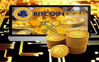 Майнинг Bitcoin Gold — настройка фермы, технические параметры и прибыльность